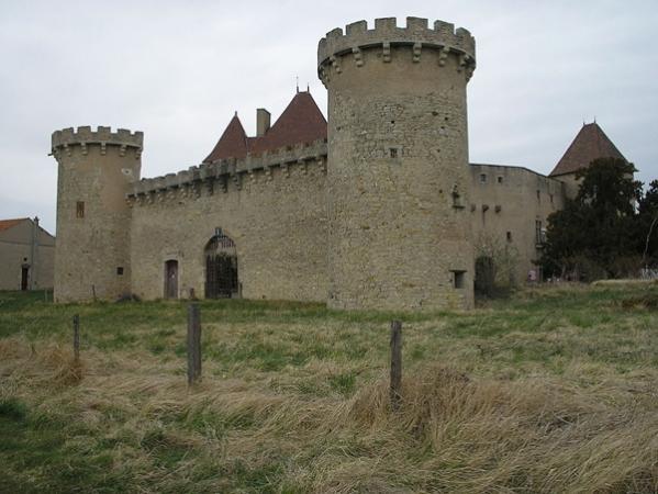 Chateau de la roche de montpensier